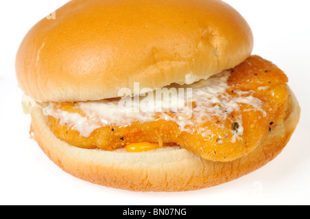 Filet of Fish Sandwich with tartar sauce and cheese on a bun on white background. - Stock Photo