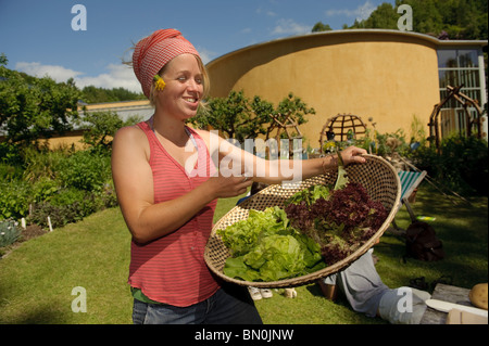 woman holding a basket of freshly picked organic lettuce at The Centre for Alternative Technology, Machynlleth, - Stock Photo