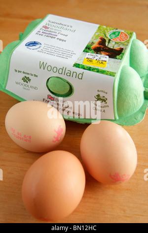 Box of Free Range Eggs - Stock Photo