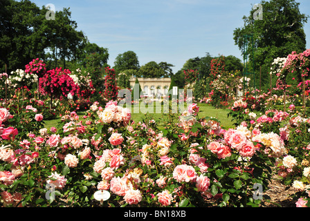 Bois de Boulogne, Parc de Bagatelle, rose garden and orangery. Bagatelle Parc, Paris, France. - Stock Photo