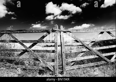Old five bar wooden gates in front of a field of barley in the english countryside. Oxfordshire, England. Monochrome - Stock Photo