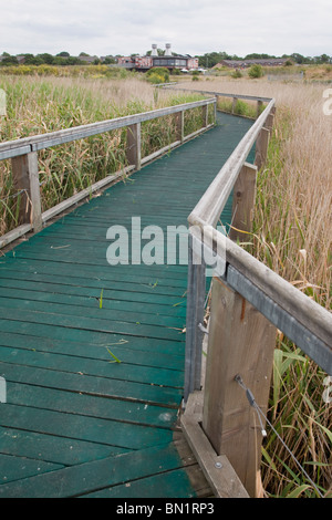 Boardwalk at Rainham Marshes RSPB Reserve, with the eco-friendly Information and Visitor Centre. - Stock Photo