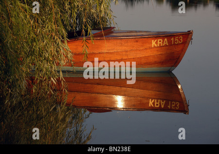 An empty wooden boat under a willow, Prangendorf, Germany - Stock Photo