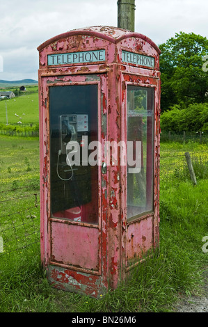 A neglected old red telephone box in the Scottish Borders - Stock Photo
