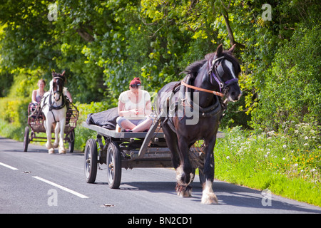A Gypsy traveling towards the Appleby Horse Fair on a horse and trap, checks her mobile phone near Kirkby Lonsdale, - Stock Photo