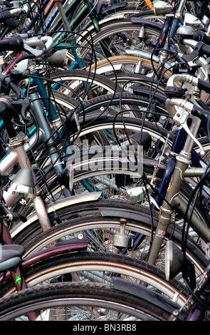 Close-up of bicycles parked in row - Stock Photo