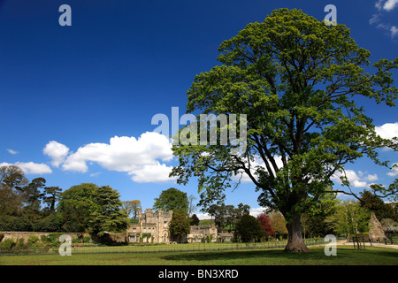 Summer view 12th Century Bolton Abbey North Yorkshire Dales National Park England - Stock Photo