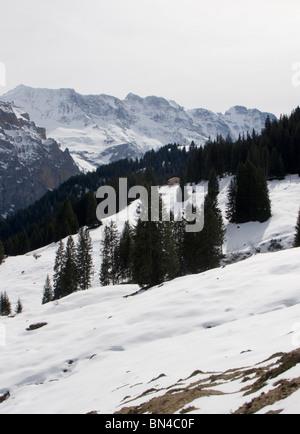 Ski area Winteregg Grutschalp, Lauterbrunnen,Zwitserland - Stock Photo