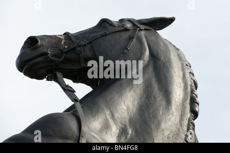 A black statue of a horse standing on it's hind legs rearing up with its handler holding the reins. Photo by Matt - Stock Photo