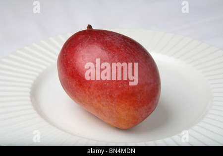 Fruit ; Red Mango ; Sweet ; Sour test ; Colourful ; One mango in a plate ; India - Stock Photo