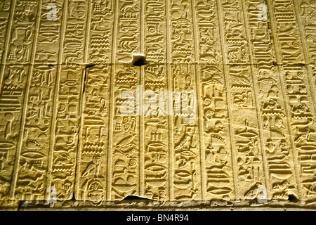 Hieroglyphics carved into the wall, the Temple of Horus at Edfu, Upper Egypt - Stock Photo