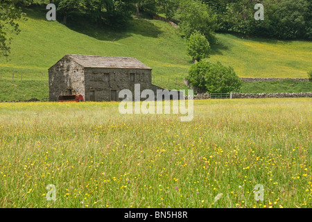Barn and hay meadow in Upper Swaledale, Yorkshire Dales, UK