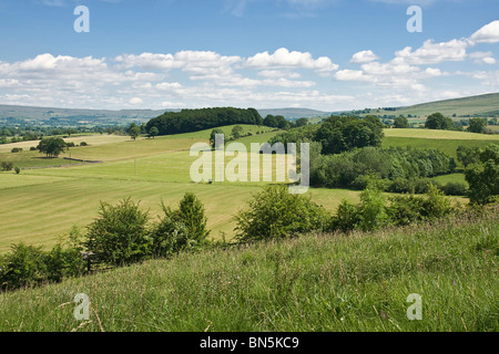 Farmland near Sedbergh in the Upper Eden valley, Cumbria. The picture shows grassland after cutting for silage. - Stock Photo