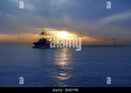 professional fishing boat and seagull turn back port on sunset sunrise - Stock Photo