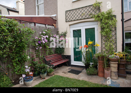 Rear of Suburban terraced house with clematis on fence and flower pots - Stock Photo