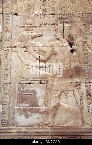 Bas relief alabaster carvings of The crocodile god Sobek at the Temple of Horus and Sobek, Kom Ombo, Upper Egypt - Stock Photo