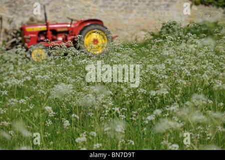 Tractor in flowery field - Stock Photo