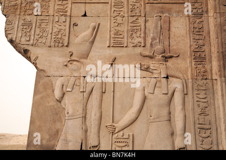 Bas relief alabaster carvings of the gods  Horus and Sobek at the Temple of Horus and Sobek, Kom Ombo, Upper Egypt - Stock Photo
