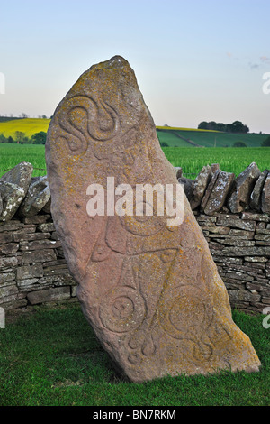 The Serpent Stone, a carved Pictish stone at Aberlemno, Scotland, UK