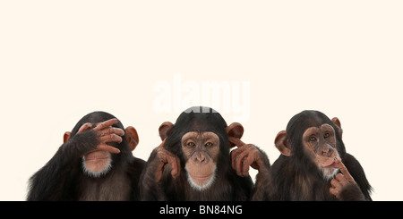 blah blah blah - Stock Photo