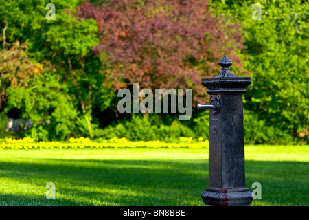 Fountain in the park - Stock Photo