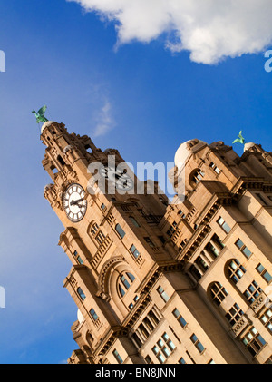 The Royal Liver Building on the Pier Head near River Mersey in Liverpool England opened in 1911 designed by Walter - Stock Photo