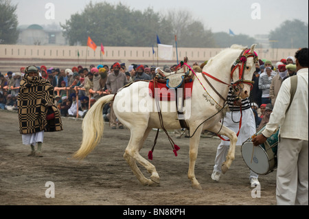 Muktsar India Maghi Mela  Punjab Horse Dance Fair - Stock Photo