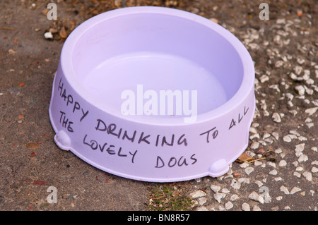 A dog water bowl kindly left out in the street for dogs on a hot day in the Uk - Stock Photo