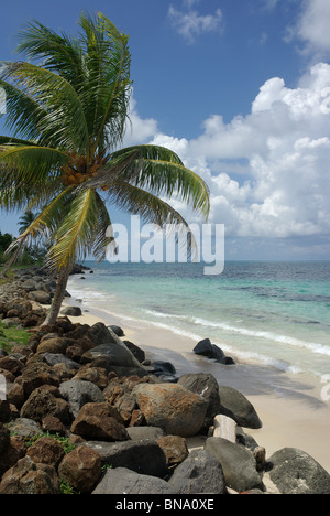 Sally Peaches, Big Corn, Corn Islands, Nicaragua - Stock Photo