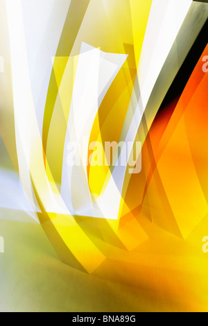 Abstract symbols of forest growth - Stock Photo