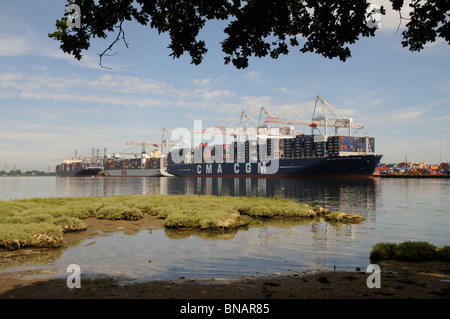 Ships on the quayside at DP World ABP Southampton England UK A large port in southern England - Stock Photo