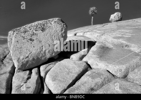 Granite rock and lone tree. Yosemite National Park, California - Stock Photo