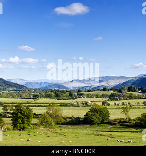 Mountains in the Lake District - View to the central Lakeland fells across Bassenthwaite Common, The Lake District, England, UK