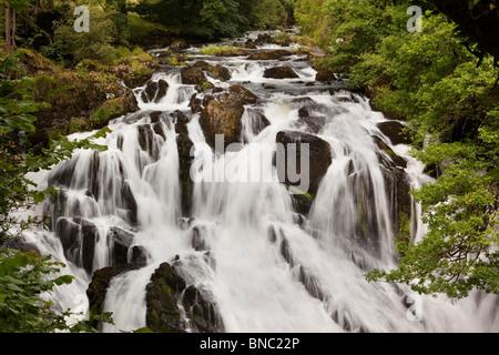 UK, Wales, Conway, Betws-y-Coed, Swallow Falls on Afon Llygwy - Stock Photo