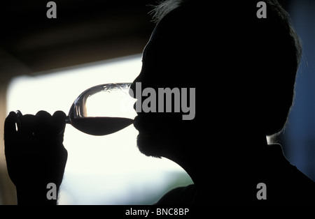 Wine taster in Edna Valley Central California - Stock Photo