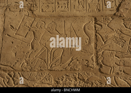 The Siege of Dapur. A syrian charioteer is protected from the egyptian arrows whith his shield. Ramesseum. Egypt. - Stock Photo