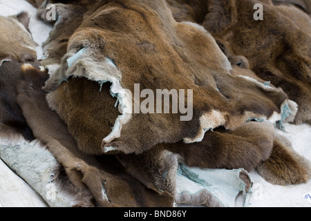 Fur and Leather at the Battle of Tewksbury Medieval reenactment - Stock Photo