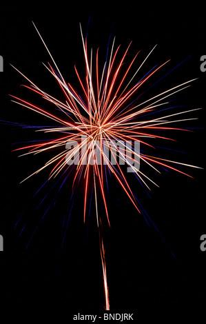 Fireworks Burst in the Night Sky - Stock Photo