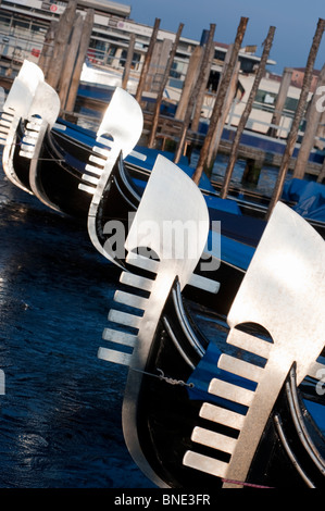 Evening sun shining on prows of gondolas moored n Grand Canal in Venice Italy