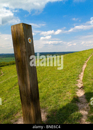 Wooden signpost on the Chiltern Way long distance footpath in Bedfordshire southern England UK - Stock Photo