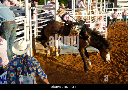 Cowboy member of PRCA rodeo is trying to balance himself on horse in Smalltown Bridgeport, Texas - Stock Photo