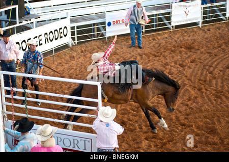 Horse trying to throw rodeo cowboy member of PRCA from its back in Smalltown Bridgeport Texas, USA - Stock Photo