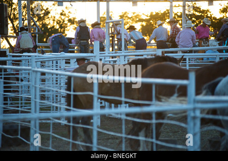 Cowboy members of PRCA at rodeo event in Bridgeport  Texas, USA - Stock Photo