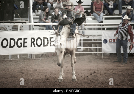 Horse trying to throw rodeo cowboy member of PRCA from its back in Smalltown, Bridgeport, Texas, USA - Stock Photo