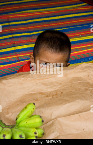 Young Malaysian boy looking over a table with bananas on it - Stock Photo