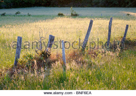 Idyllic country scene of a fence in a grassy field at sunset. La Creuse, Limousin, France. - Stock Photo