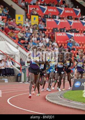 The field running 5000m in IAAF Diamond League Gateshead - Stock Photo