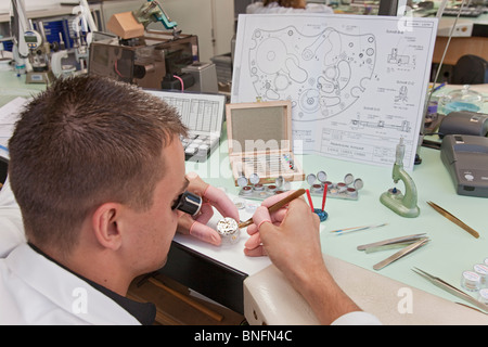 Lange und Soehne GmbH: manufacture for precious watches in Glashuette, Germany - Stock Photo