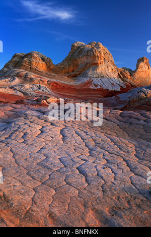 'Brain' sandstone rock formations at 'White Pocket' in Vermilion Cliffs National Monument, Arizona - Stock Photo