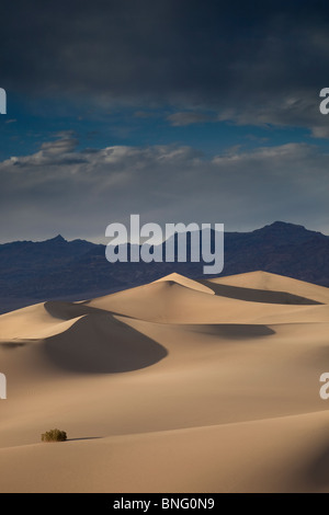Mesquite Dunes near Stovepipe Wells Death Valley CA USA